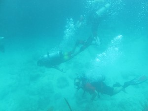 Divers at Looe Key, I think it is Ian and his dad Mike.