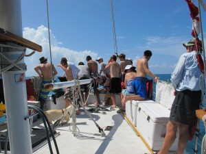 We did get to see a dolphin on the bow.  I didn't get a photo, but everyone ran to the bow!