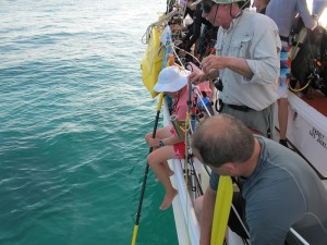 More on our impromptu methods of helping the divers up the ladder avoid the jellies.