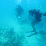 The divers usually go off in groups of two to explore a site.  But the boys always find each other near the end of the dive and form a loosely milling cluster under the boat.