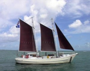 Conch Pearl under sail