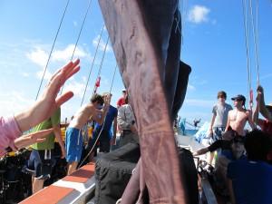 Raising sails.