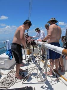 Preparing to raise the anchor.